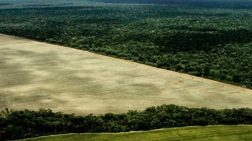 Exploiting the Amazon natural resources?