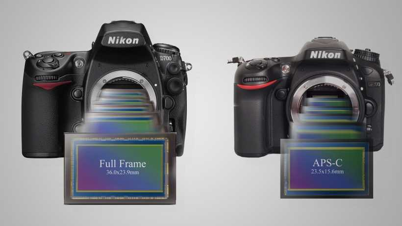 Full Frame or Crop Frame Camera