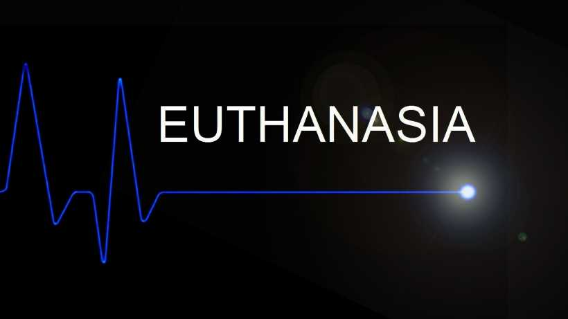Mercy killing debate: should euthanasia be legalized
