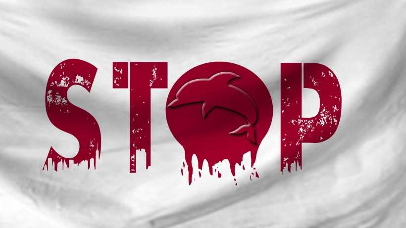 ban dolphin hunting in Japan. Stop!