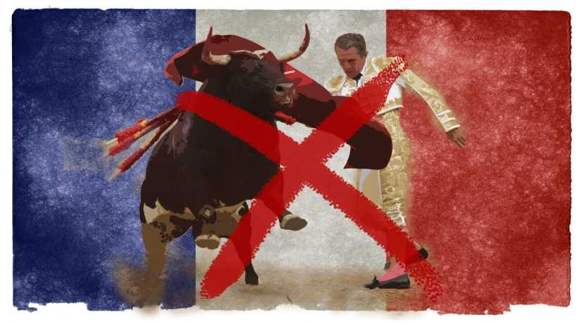 Ban bullfighting in France