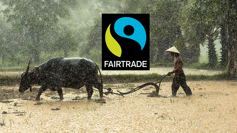 fair trade pros and cons